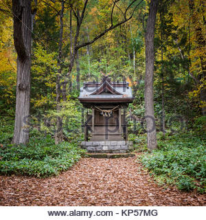 Shinto Shrine in a forest.  Furano Hokkaido Japan - Stock Image