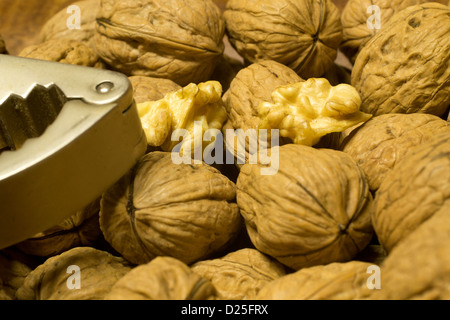 A detail of wallnuts and a nutcracker. - Stock Image