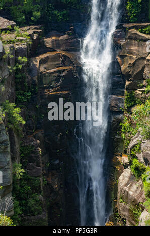 Carrington Falls waterfall, Southern Highlands, NSW, Australia - Stock Image