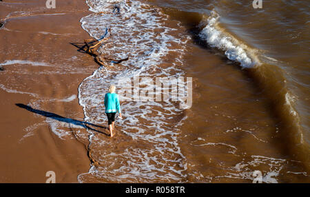 Sidmouth, Devon. 2nd Nov 2018. UK Weather: A woman paddles in the sea at Sidmouth on a sunny November afternoon. Photo Central/Alamy Live News - Stock Image