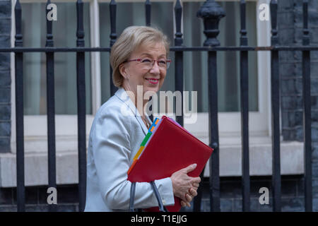 London 26th March 2019, Andrea Leadsom MP PC, Leader of the House of Commons, leaves a Cabinet meeting at 10 Downing Street, London Credit: Ian Davidson/Alamy Live News - Stock Image
