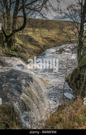 A waterfall and cascade on Langdon Beck, Teesdale, UK backlit by winter sunshine and a dark sky - Stock Image