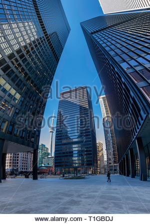 TD Centre (black) BMO (white) bank towers in the financial district of Toronto Ontario Canada. - Stock Image
