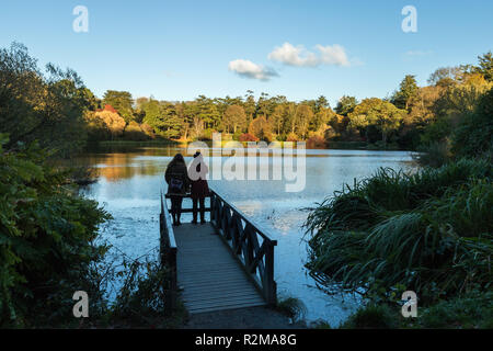 A young couple on a jetty enjoying the Autumn colours in late afternoon over a lake at Mount Stewart, Newtownards, County Down, N.Ireland. - Stock Image