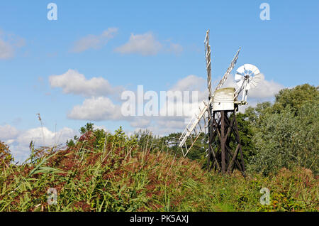 A view of Boardman's Drainage Mill through the reeds by the River Ant at How Hill, Ludham, Norfolk, England, United Kingdom, Europe. - Stock Image