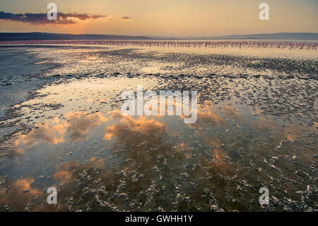 Clouds reflected in Lake Nakuru with flamingos and sunset in background. Kenya, Africa. - Stock Image