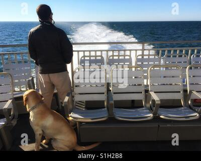 Man and dog on ferry to Nantucket, Massachusetts - Stock Image