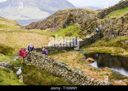 Hikers climbing over awkward stone wall stile on path up Yr Aran north ridge in mountains of Snowdonia National Park. Gwynedd, Wales, UK, Britain - Stock Image