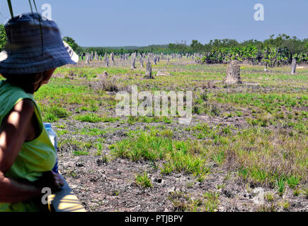 Woman Tourist looking at the Magnetic Termite Mounds, Amitermes Meridionalis, Lichfield National Park,Northern Territory, Australia - Stock Image