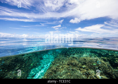 Split level ocean view, Lady Elliot Island, Queensland, Australia - Stock Image