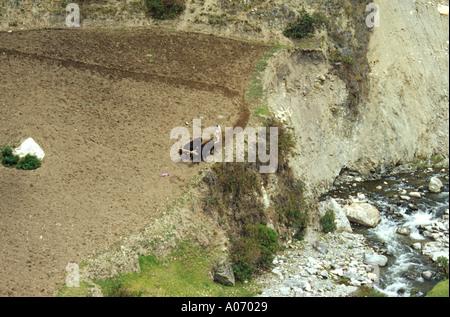 Ploughing the Fields, Subsistence Farming, Sierra Nevada Venezuela - Stock Image