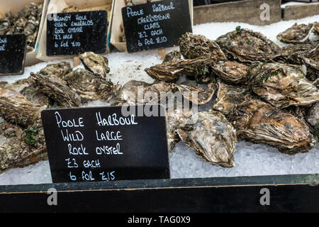 Rock Oysters Wild Large from Poole Harbour Dorset with blackboard price labels, on display in ice at Borough Market London produce market, Southwark London UK - Stock Image