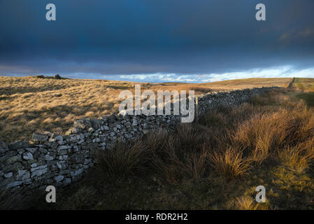 Dere Street part of the Roman road a major route for the Romans in what is now the Scottish Borders - Stock Image
