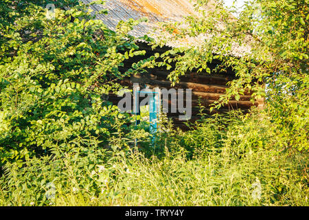 old abandoned wooden house in the russian village on summer day - Stock Image