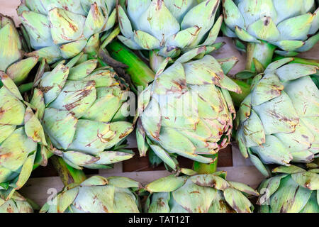 Close up of fresh artichokes on display at Broadway Market in London - Stock Image
