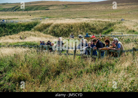 A group of people men and women males and females male and female bird watching at a viewpoint on the Bempton Cliffs RSPB Reserve, UK on a bright, sun. - Stock Image
