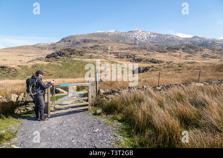 A single female hiker opens a gate to begin the ascent of Mount Snowdon in the Snowdonia National Park in Wales, via the Rhyd Ddu path. - Stock Image