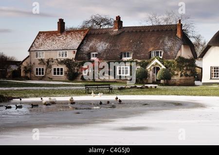 frozen pond in Haddenham village - Stock Image