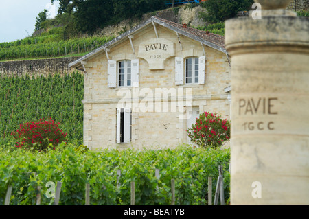 chateau pavie saint emilion bordeaux france - Stock Image