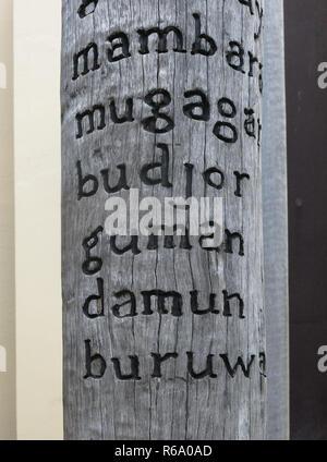 Sydney Living Museum Aboriginal  Edge of the trees exhibit - Stock Image
