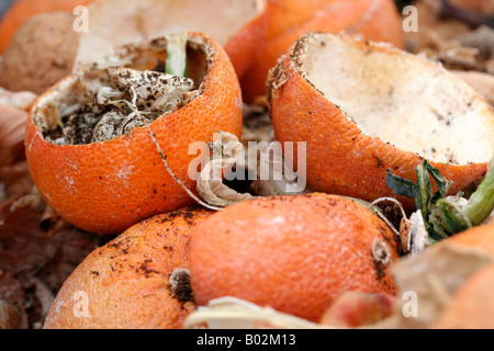 Tight shot of a compost heap. - Stock Image