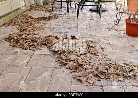 Pile of dead leaves on an outdoor patio. - Stock Image