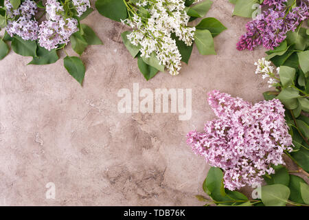 The decor of lilac flowers on a textural background. Textural background with lilac flowers and a place under the text. View from above. Flat lay. - Stock Image