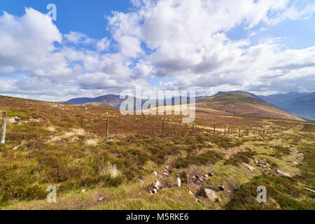 Views towards the summit of Starling Dodd on route to the summit of Great Borne in the English Lake District, UK. - Stock Image