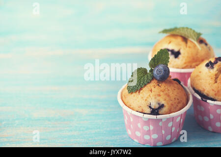 blueberry muffins in pink cases, fresh mint on blue wooden background (toning) - Stock Image
