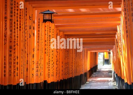 Orange laquered Torii gates at Fushimi Inari Taisha shrine in Kyoto, Japan - Stock Image