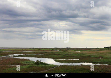 Looking towards Brancaster from Thornham across the marshes on the North Norfolk coast. - Stock Image