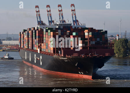 Al Murabba - Stock Image