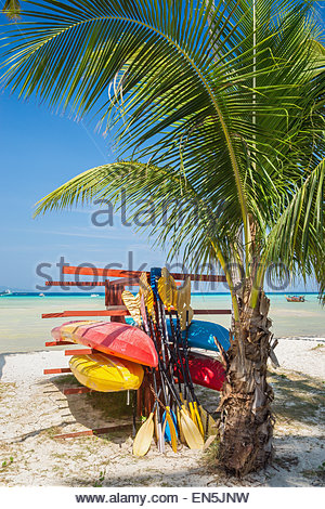 Canoes and sea kayaks on a beach - Stock Image