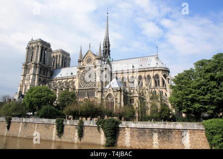 Wide angle view of Notre Dame de paris, France - Stock Image