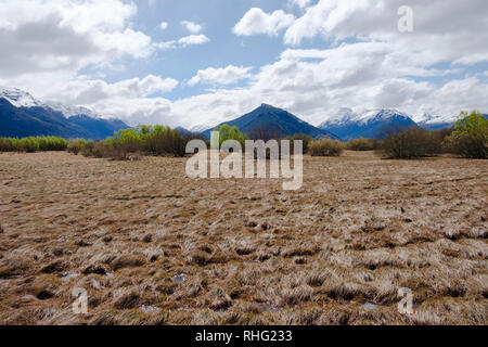 Marshland with Mountains in Glenorchy, South Island, New Zealand - Stock Image
