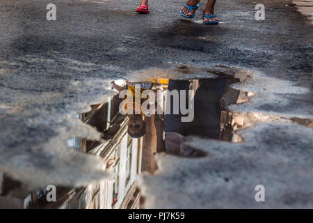 this pic was taken at Old city of Ahmedabad in summer. in this pic, the road is seen wet due to breakage of water  pipe - Stock Image