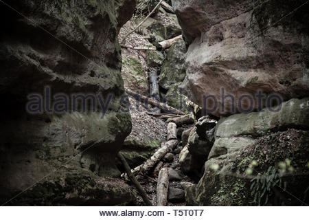 Living rock - Stock Image