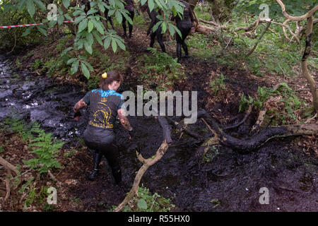 Muddy woman crossing ditch in an obstacle race - Stock Image