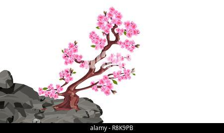 Sakura blooms. Cherry tree on a stone cliff in the mountains. illustration - Stock Image