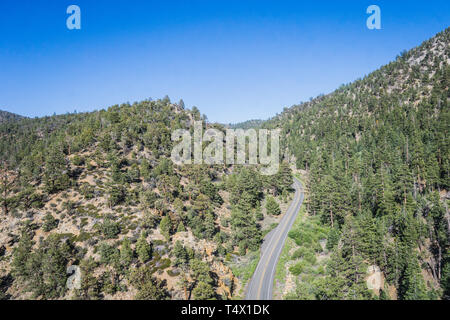 Road in forest hills covered in pine trees in California mountains. - Stock Image
