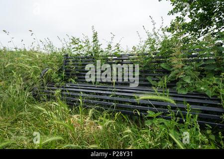 Overgrown seat - Stock Image
