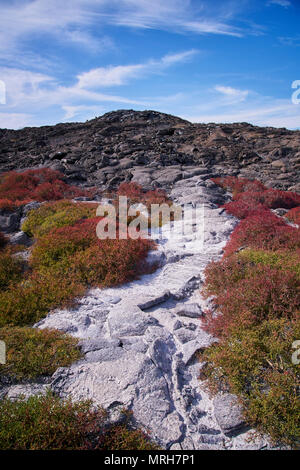 Rugged landscape of Chinese Hat in the Galapagos Islands - Stock Image