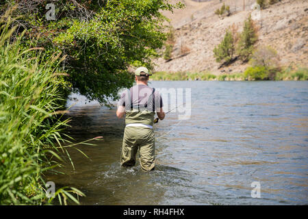 Fly fisherman casting to rising native redside rainbow trout on the Lower Deschutes River in Oregon. The Deschutes is listed as Wild and Scenic. - Stock Image