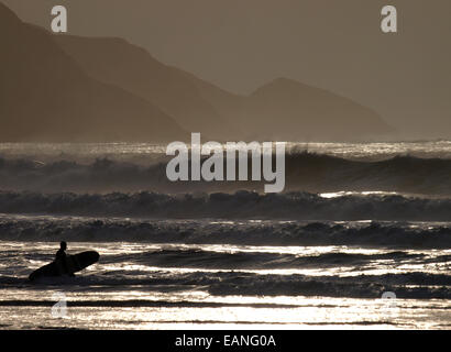 Silhouette of a surfer entering the sea in winter, Widemouth Bay, Bude, Cornwall, UK - Stock Image