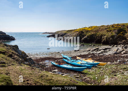 Sea kayaks beached in a small rocky cove on west coast. Rhoscolyn, Holy Island, Isle of Anglesey, North Wales, UK, Britain - Stock Image