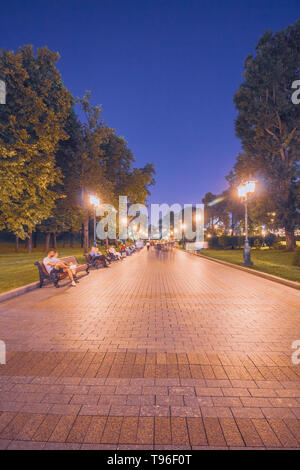 Moscow park on the red square Alexander Garden at night - Stock Image