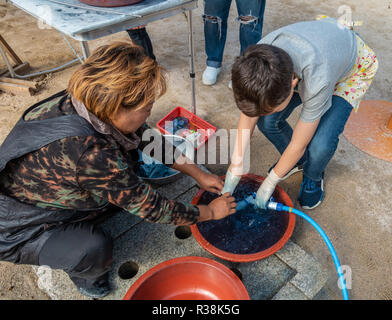 A boy, supervised by a lady, rinses excess dye out of his fabric as part of the tie dying process at Namsangol Hanok Village, Seoul, South Korea. - Stock Image