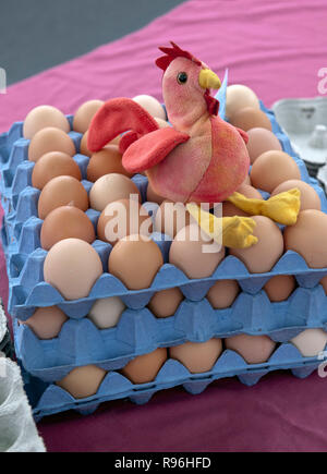 BWH8KJ tray of free range eggs with toy chicken for sale at farmers market - Stock Image
