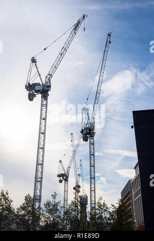 Silhouettes of several massive construction cranes with sky blue sky in the background - Stock Image