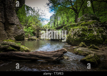 Emen Canyon, Bulgaria. Wood bridge over the river into a luxuriant forest - Stock Image